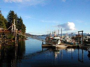 juneau harbour1
